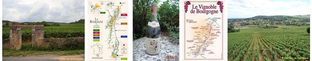 Vins et vignobles de Bourgogne
