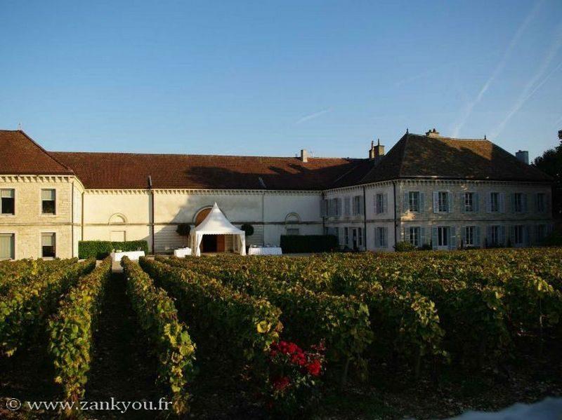 Vue sur le château, avec les vignes